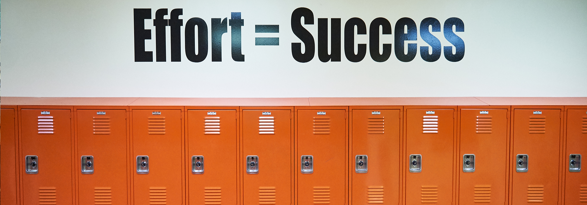 Effort equals success